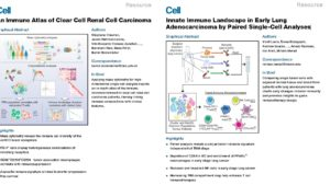 single-cell_analysis_immune_cells_in_cancer